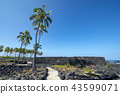 Pu'uhonua o Honaunau,National Historical Park 43599071