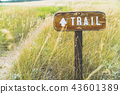trail sign on the grass field. 43601389