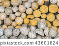 stack of logs. 43601624