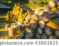 stack of logs. 43601625
