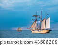 Windjammer on the Baltic Sea in Warnemuende 43608209