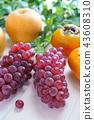 grape, japanese persimmon, persimmon 43608310
