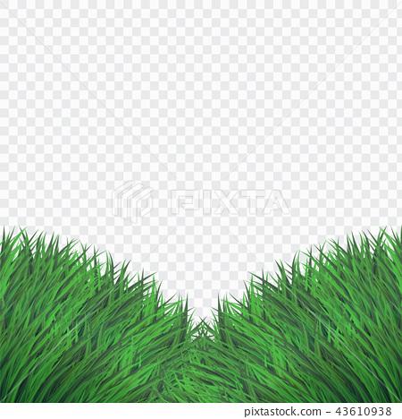 Green Bush Grass Template 43610938