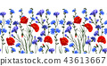 seamless rim. Border with Herbs and wild flowers, leaves. Botanical Illustration Colorful 43613667