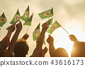Hands holding brazil flags. 43616173