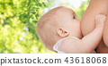 baby, mother, breast 43618068