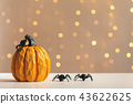 Halloween pumpkin with spider 43622625