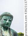 Great Buddha in kotokuin, kamakura, Japan. 43623137