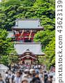 Tsurugaoka Hachimangu shrine in Kamakura, Japan 43623139