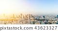 panoramic city skyline in Tokyo, Japan. tilt shift 43623327