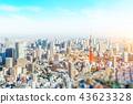 panoramic city skyline in Tokyo, Japan. tilt shift 43623328