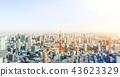 panoramic city skyline in Tokyo, Japan. tilt shift 43623329