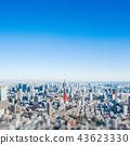 panoramic city skyline in Tokyo, Japan. tilt shift 43623330