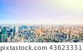 panoramic city skyline in Tokyo, Japan. tilt shift 43623331