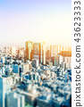 panoramic city skyline in Tokyo, Japan. tilt shift 43623333