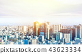 panoramic city skyline in Tokyo, Japan. tilt shift 43623334