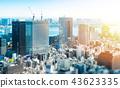 panoramic city skyline in Tokyo, Japan. tilt shift 43623335
