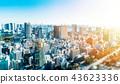 panoramic city skyline in Tokyo, Japan. tilt shift 43623336