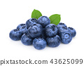pile of blueberry with green leaf isolated  43625099