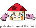 หนูเกิดความเสียหายกับบ้าน 43626543
