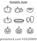 Pumpkin icon set in thin line style 43626860