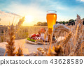 beer wheat field 43628589