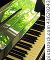 나무들의 초록이 비친 피아노 43629243