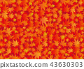 Background material _ autumn leaves 43630303