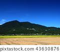 ท้องฟ้าเป็นสีฟ้า,เกษตรกรรม,เนินผา 43630876
