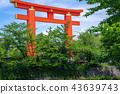 Heian Shrine torii gate, Kyoto, Japan 43639743