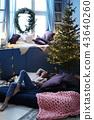 Christmas Day 43640260