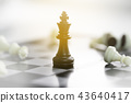 chessboard with a chess piece on the back  43640417