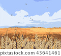 Wheat field Vector background. Beautiful fall 43641461