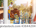 Young man riding horse on show jumping event 43644204