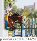 Young man riding horse on show jumping event 43644251