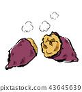 Autumn taste sweet potato illustrations 43645639