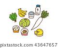 식자재, 요리 재료, 식재료 43647657