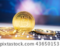 Golden bitcoin on keyboard. Cryptocurrency 43650153