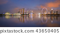 Aerial view of Singapore cityscape with reflection 43650405