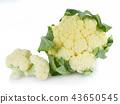 Cauliflower isolated on white background 43650545