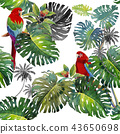 Tropical Leaves of monstera and Macaw bird. 43650698