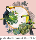 Tropical Leaves of monstera and Toucan bird. 43650937