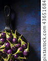 eggplants on shallow pan in the kitchen 43651684