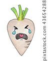 Crying white radish vegetable cartoon 43654288