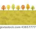 가을 가로수 43657777