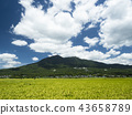 ท้องฟ้าเป็นสีฟ้า,เกษตรกรรม,เนินผา 43658789