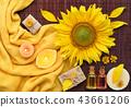 spa, soap, sunflower 43661206