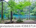 Dokko沼澤 43663714