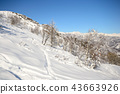 Exploring the Alps by tour skiing 43663926