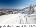 Exploring the Alps by tour skiing 43663929